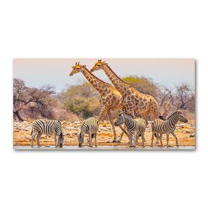 Tulup® Leinwandbild - 140x70 cm - Wandkunst - Drucke auf Leinwand - Leinwanddruck  - Tiere - Braun - Giraffen und Zebras