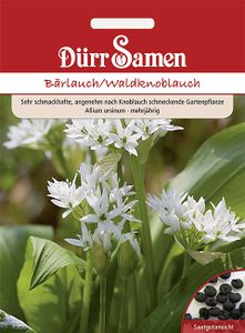 Dürr Samen - Bärlauch / Waldknoblauch