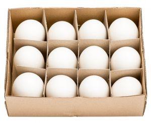 Gänseeier groß im Karton mit 12 Stück | Gänse Eier | Osterdeko | Osterdekoration | Ostereier | Dekoeier