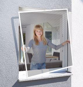Schellenberg Insektenschutz-Fenster 100 x 120 cm, BASIC Fliegengitter & Mückenschutz, Farbe Weiß