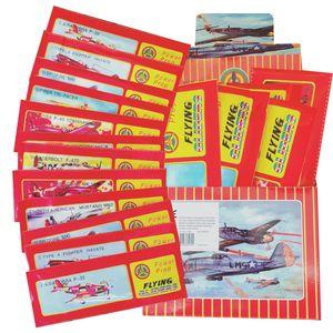 Gleitflugzeuge Flieger 48er Set für Kindergeburtstag im Display