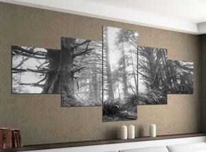 Leinwandbild 5 tlg. 200cmx100cm Dschungel Regenwald Wald Sonne schwarz weiß Bilder Druck auf Leinwand Bild Kunstdruck mehrteilig Holz 9YA1761, 5Tlg 200x100cm:5Tlg 200x100cm