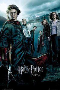 Harry Potter und der Feuerkelch Poster 91,5 x 61 cm