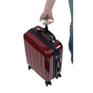 Digitale Gepäckwaage mit LCD Anzeige 10 x 4 x 3 cm Kofferwaage Lift bis 40 kg