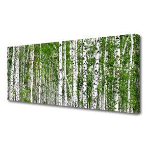 Tulup Leinwand-Bilder 125x50 Wandbild Canvas Kunstdruck Birken Wald Bäume Natur