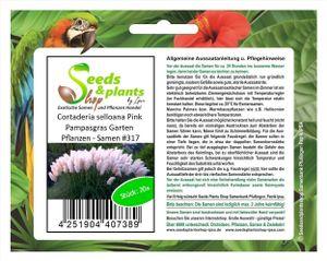 10x Cortaderia selloana Pink Pampasgras Garten Pflanzen - Samen #317