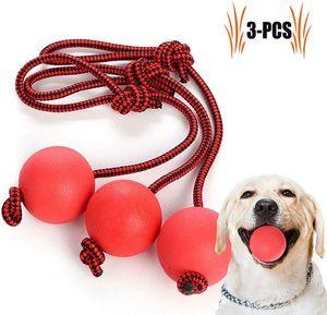 Wurfball Hund, 3 Stück Elastische Hundespielzeug Ball mit Seil | Naturgummiball Seil | Welpenspielzeug Hund | Kleine Hunde Spielzeug | Spielzeug für Hunde | für Kleine Hunde Welpen