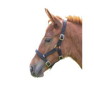 Shires Fohlenhalfter ER409 (Foal/Mini) (Schwarz)