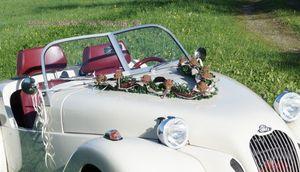 Autoschmuck Autogesteck Hochzeit Brautauto Autogirlande braun cappuccino champagner AU0025