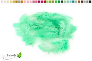 Bastelfedern 5-10cm, ca. 80-100 Stück, Farbauswahl:mintgrün / mint 513