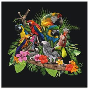 ARTland Alubilder Papageien Graupapagei Kakadu Dschungel Alubild Größe: 70x70 cm