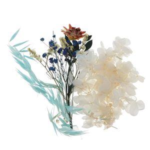 Natürliche Getrocknete Blumen für Harz Epoxy Crafts Card Making Phone Case Diy Farbe D