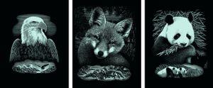 Scraper Kratzbilder 3er Set Silber - Wildtiere