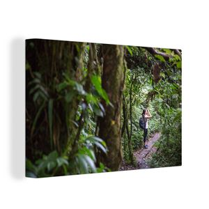 Leinwandbild - Monteverde - Wald - Frau - Regenwald - 60x40 cm - Foto auf Leinwand - Gemälde auf Holzrahmen