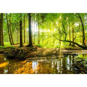 Wald 9141a RUNA Wald VLIES FOTOTAPETE XXL DEKORATION TAPETE− WANDDEKO 396 x 280 cm