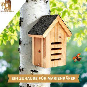 deintierhaus.de©   Marienkäferhaus aus Naturholz - Marienkäferhotel - Unterschlupf & Überwinterungshilfe für Marienkäfer - unbehandeltes, wetterbeständiges Massiv-Holz - Insektenhotel   23 x 17 x 11 cm