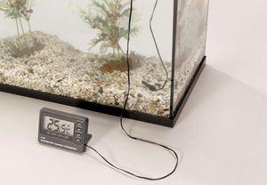 Europet Bernina Digital Thermometer für Aquarium oder Terrarium