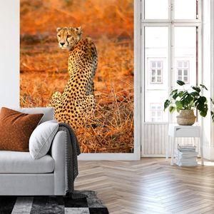 A.S. Création Vlies Fototapete Leopard Leopard Safari DD119074 Tiere  Designwall