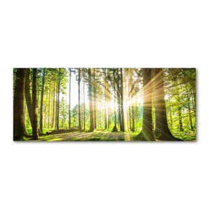 Tulup® Glas-Bild Wandbild aus Glas - 125x50 - Wandkunst - Wandbild hinter gehärtetem Sicherheitsglas - Dekorative Wand für Küche & Wohnzimmer  - Landschaften - Wald Sonne - Grün