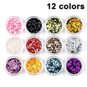 12 Farben Glitzer Set, Glitter Glitzerpulver Set Feine Glitzerpuder Glitzer Pulver für Nagelkunst, Make-up, Basteln, DIY