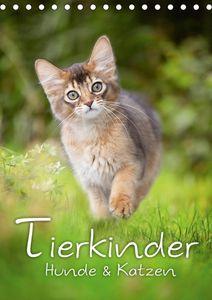 Calvendo Wandkalender Tierkinder Hunde und Katzen (Tischkalender 2021 DIN A5 hoch) 2021 DIN A5