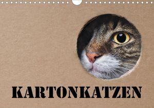 Calvendo Wandkalender Karton Katzen (Wandkalender 2021 DIN A4 quer) 2021 DIN A4