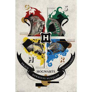 Harry Potter - Poster, Hogwarts Häuser TA7723 (Einheitsgröße) (Weiß/Schwarz)