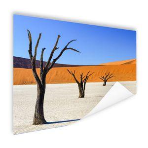 Poster - 180x120 cm - Baumbäume in der Wüste  - Modernes Wandbilder - XXL - Natur