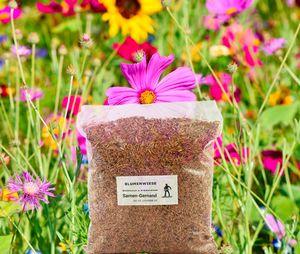 Blumenwiese Wildblumenwiese 500g Frische Saat für 50 m²