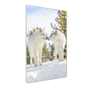 Tulup® Glas-Bild Wandbild aus Glas - 60x120 - Wandkunst - Wandbild hinter gehärtetem Sicherheitsglas - Dekorative Wand für Küche & Wohnzimmer  - Tiere - Zwei weiße Wölfe - Weiß