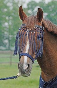 BUSSE Fliegenkordelband EXKLUSIV, braun, Pony