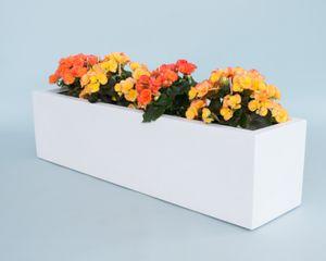Pflanztrog Blumentrog Fiberglas 100x25x25cm perlmuttweiss
