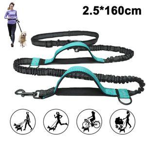Jogging Hundeleine mit verstellbarem Bauchgurt - 160cm Dehnbare Laufleine für kleine und große Hunde - Bauchgurtleine I Joggingleine