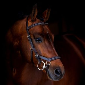 Horseware Rambo Micklem Deluxe Competition Eng Lthr. - Black, Größe:Vollblut (M)