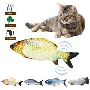 Katzenspielzeug Elektrische USB-Ladesimulation Fisch Lustige interaktive Haustiere Katzen Katzenminze Spielzeug fuer  Kätzchen Kätzchen-Perfekt zum Beissen Kauen Treten 【Lachs/Wels/Graskarpfen/Silber Arowana】