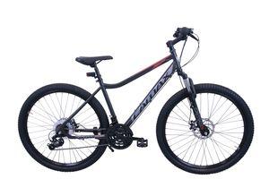 "Mountainbike CAMAX 29"" dark ash"
