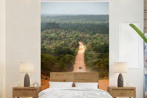 Tapeten - Fototapete - Straße durch den Dschungel Afrikanischer Dschungel in Mosambik - 195x300 cm - Vinyl