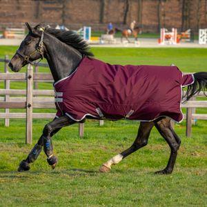 Horseware Amigo Hero Ripstop 50g - Fig/Silver, Größe:145