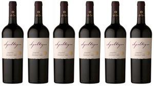 6x Carmenere Reserva 2017 – Weingut Apaltagua, Valle de Colchagua – Rotwein
