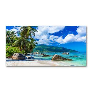 Tulup Acrylglas - Wandkunst - 100 x50 cm -  Bild auf Plexiglas® Dekorative Wand für Küche & Wohnzimmer  - Landschaften - Seychellen Strand - Mehrfarbig