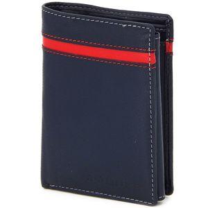 Männer Portemonnaie aus echt Leder – RFID Schutz Geldbörse Hochformat – Herren Geldbeutel, Wallet - Blau