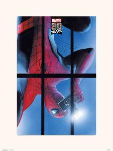 Druck 30x40 cm marvel spider-man 80 Jahre