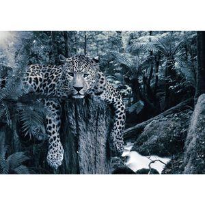 Leopard 9201b RUNA Leopard VLIES FOTOTAPETE XXL DEKORATION TAPETE− WANDDEKO 352 x 250 cm