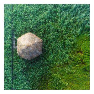 Glasbild - Strohhütte im hohen Schilf - Quadrat 1:1, Größe HxB:50cm x 50cm