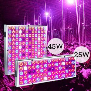 169-LED 45W Grow Light Lamp Vollspektrum 2835SMD Reflektorschale Pflanzenlampe