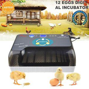 Inkubator Vollautomatische Brutmaschine 12Eier Brutkasten Brutapparat Ente Huhn