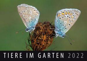 Tiere im Garten 2022