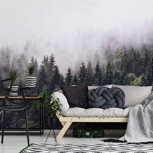 A.S. Création Vlies Fototapete Wald Foggy Forest  DD119016 Baum Designwalls 2.0