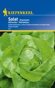 KIEPENKERL® Salat Attraktion - Gemüsesamen