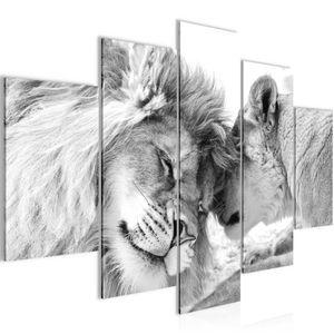 Löwen Liebe BILD :150x100 cm − FOTOGRAFIE AUF VLIES LEINWANDBILD XXL DEKORATION WANDBILDER MODERN KUNSTDRUCK MEHRTEILIG 002153c